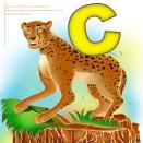 cheetah Jungler