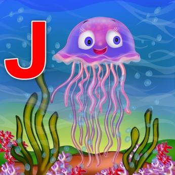 jelly fish02 (1)