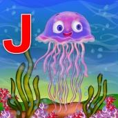 jelly fish02