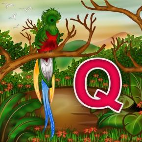 Q animal01
